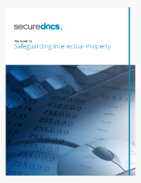 SD_Ebook Cover_Safeguarding IP.png